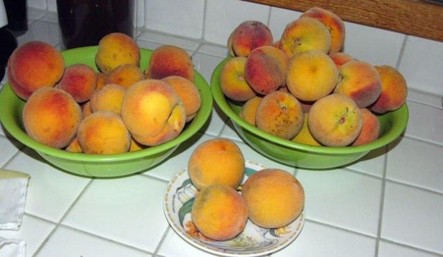 peaches-2015