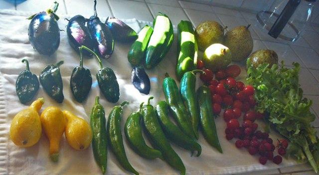 Nov-7-veggies-2015